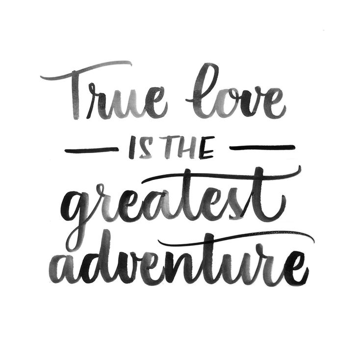 """Words Of Love Quotes Glamorous Love Quote  Love Quote  """"true Love Is The Greatest Adventure"""