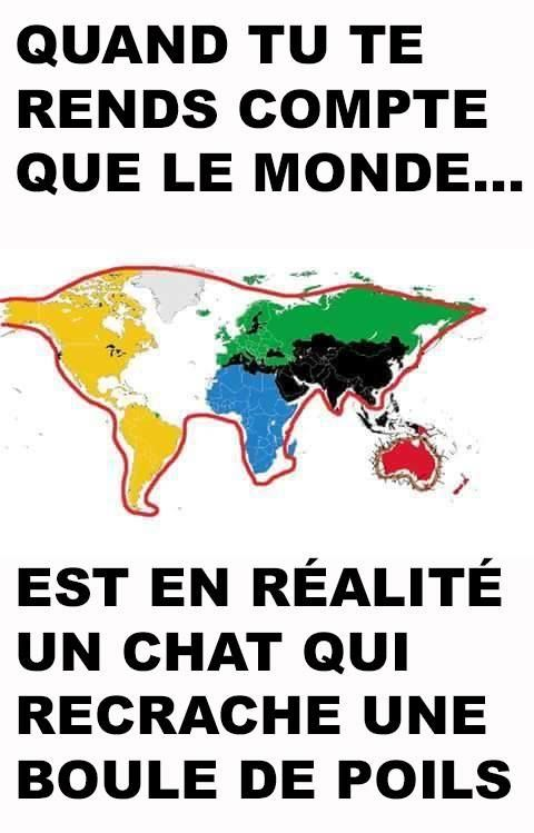 carte du monde chat Best Humor & quotes Toujours plus de délire en vrac   QuotesStory
