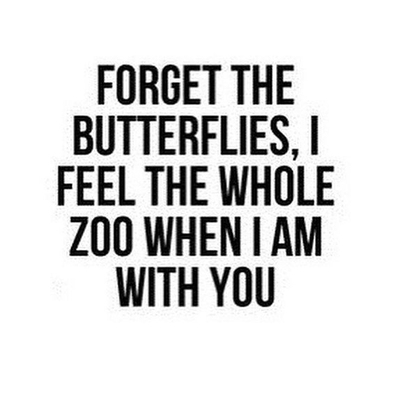 Love quote Inspiring love quotes forget the butterflies I feel Simple Inspiration Love Quotes