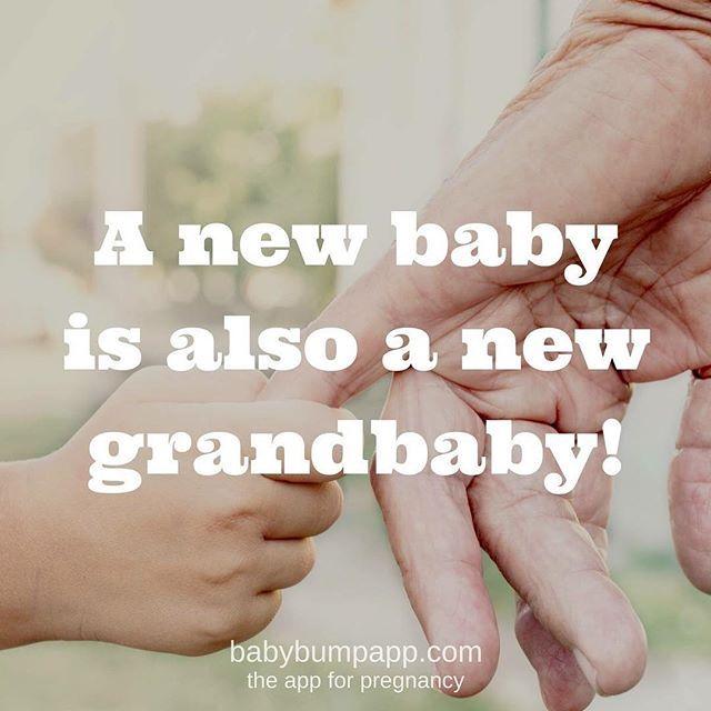 quotes happy grandparents day love grandparents