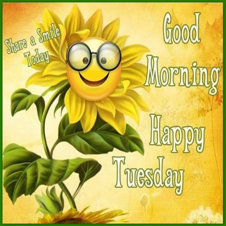 tuesday quotes good morning happy tuesday have a smile day