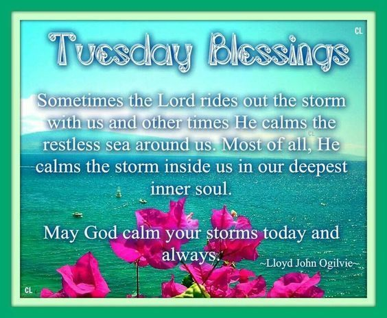 Tuesday Quotes Tuesday Blessings Day Good Morning Tuesday Tuesday