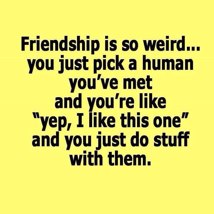 Friendship Quotes Best Friendship Quotes Collection Friend Fascinating Best Quotes About Friendship
