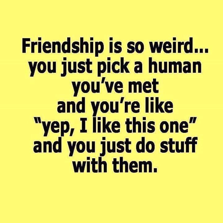 Friendship Quotes Best Friendship Quotes Collection Friend Magnificent Best Quotes About Friendship
