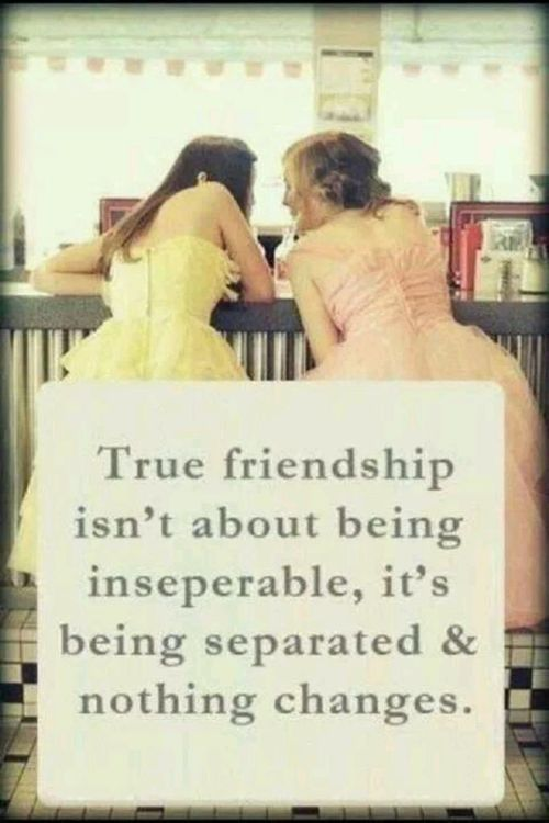 Friendship Quotes Quotes About Friendship This Is Definitely Me