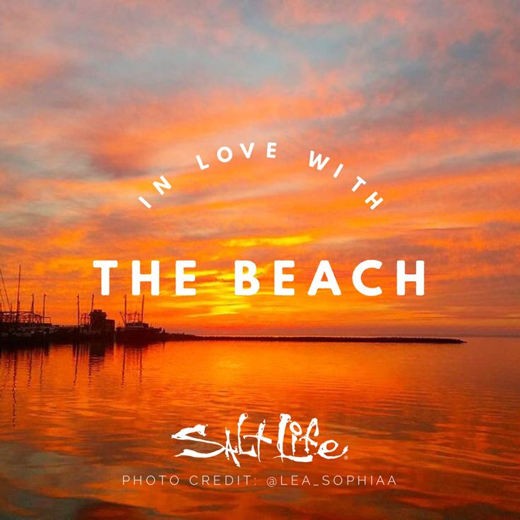 Summer Quotes In Love With The Beach Quotesstory Leading