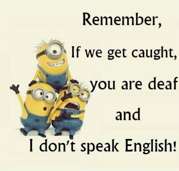 friendship quotes funny minion quotes of the week something new